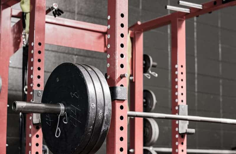 Squat Rack large